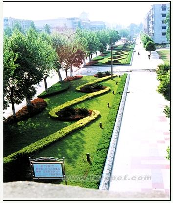 首页 供应信息 工程信息 施工 > 正文  园林设计乙级 认证档案 中国