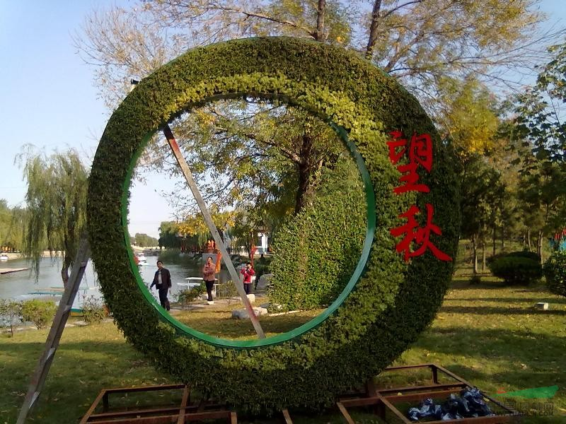 五色草植物立体造型_五色草植物立体造型图片