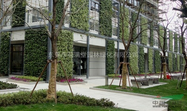 供应立体垂直绿化,围墙垂直绿化,墙体绿化,别墅绿化施工,假山水池定做