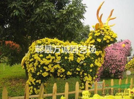 立体花坛动物造型 植物雕塑 植物绿雕 艺术造型