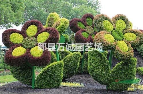 立体花坛动物造型 植物雕塑
