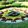 高性能花坛钟 高品质景观钟