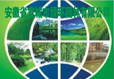 安徽宣城绿环园林苗场