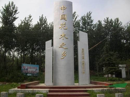 沭阳县优佳绿化苗木园艺场