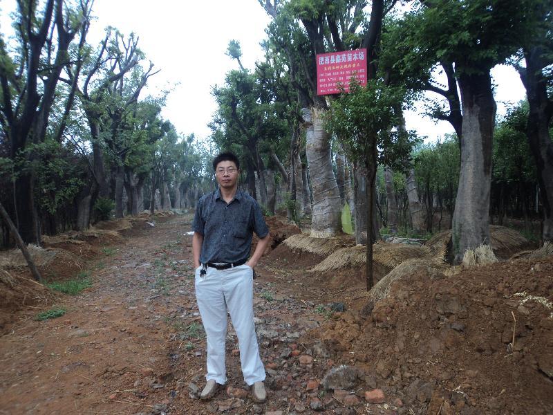 合肥志诚园林景观工程有限公司