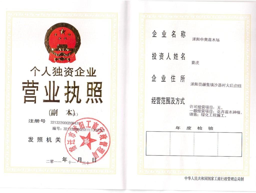 江苏沭阳县申奥苗木总场