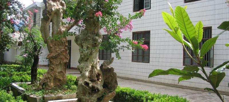 湖北五峰紫薇园