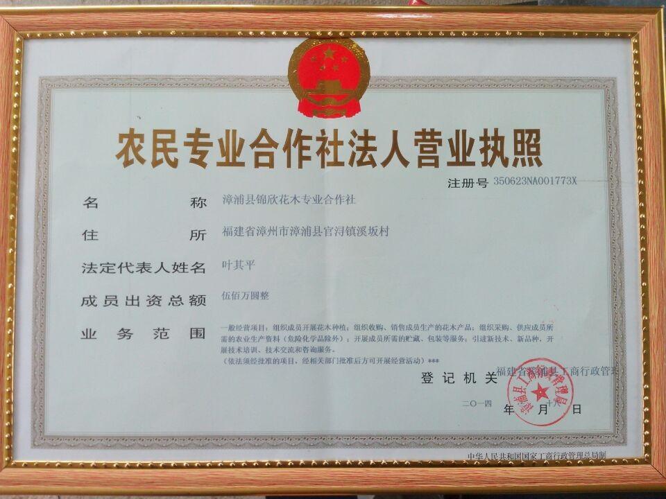 漳浦县锦欣花木专业合作社