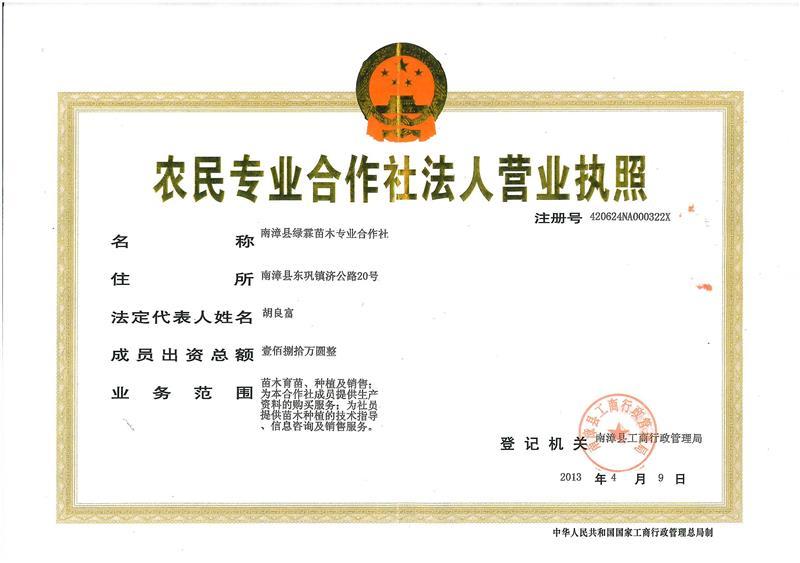 南漳县绿霖苗木专业合作社