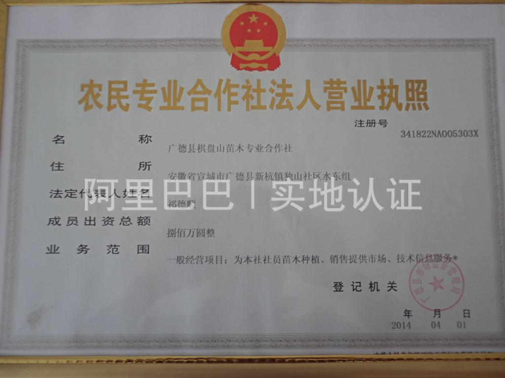 广德县棋盘山苗木专业合作社