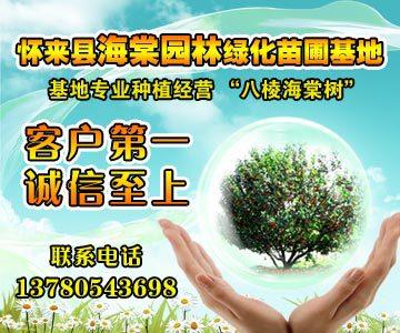 河北省怀来县海棠园林绿化苗圃基地
