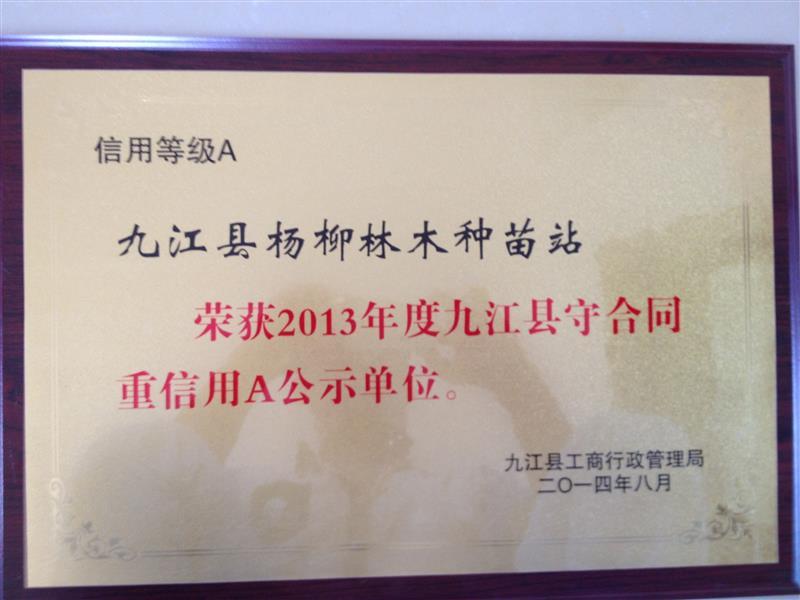 江西九江杨柳林木种苗站