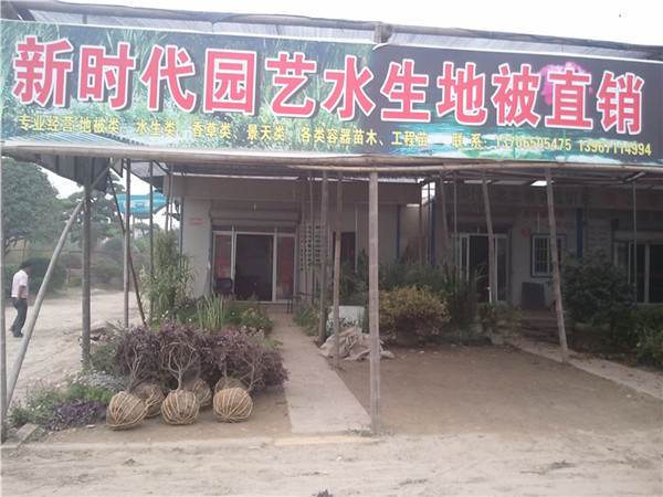 杭州萧山新街镇新时代园艺场