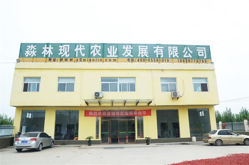 太和县淼林种植专业合作社
