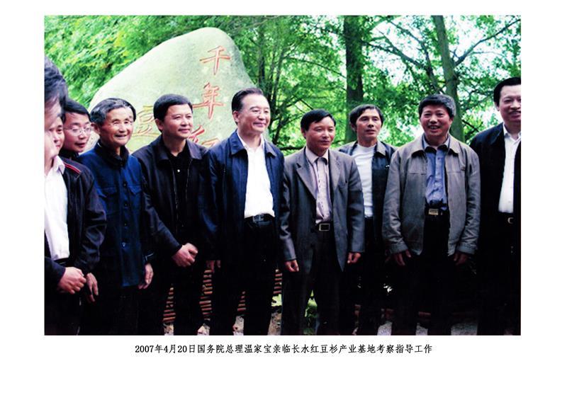 武宁县山水园林苗木场
