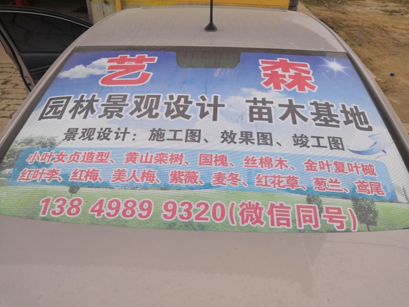 鄢陵县艺森园林绿化苗木基地