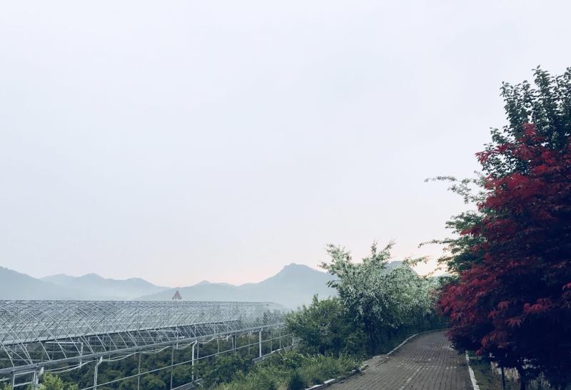 青岛桂芳生态农业有限公司