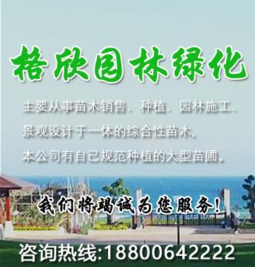 沭阳格欣园林绿化工程有限公司