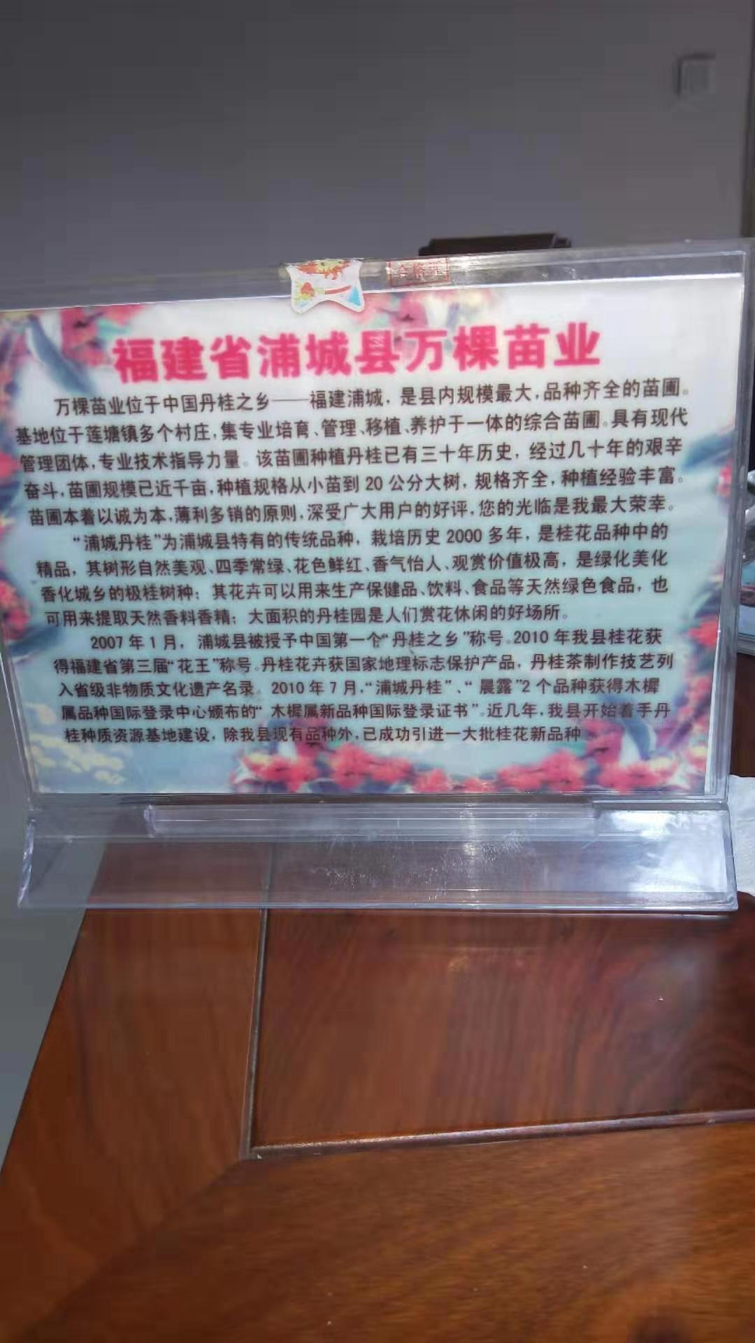 黄志飞(个体经营)