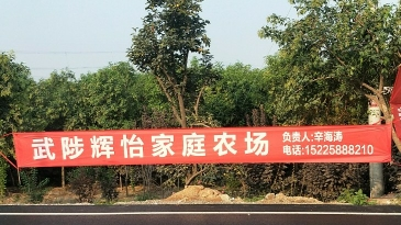 武陟辉怡家庭农场