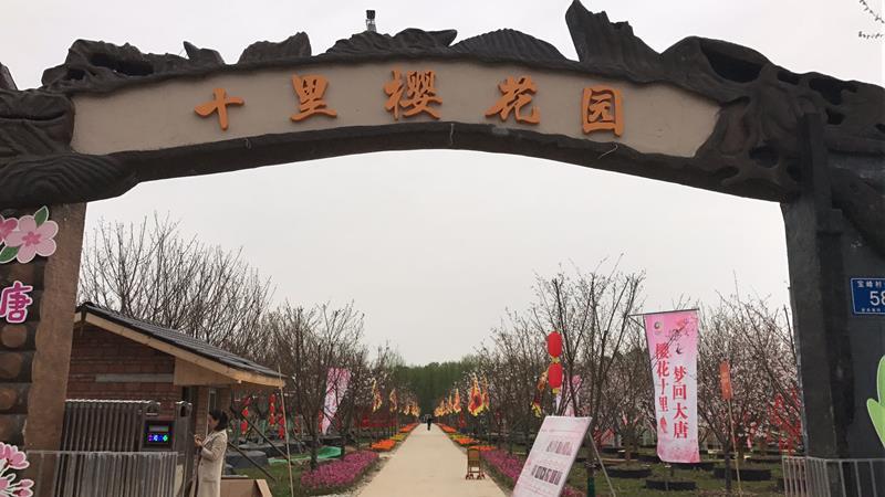 成都茂青农业开发有限公司