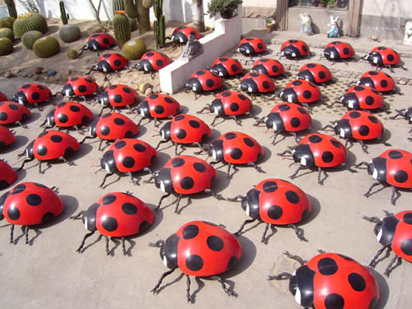 少儿手工七星瓢虫内容少儿手工七星瓢虫版面设计