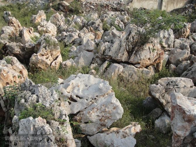太湖石山场 景观石供应图片
