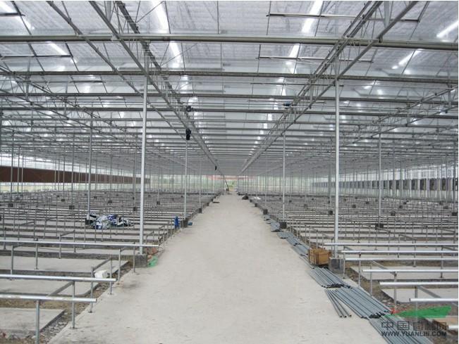 连栋温室,日光温室,连栋薄膜温室,塑料大棚,暖棚,蔬菜