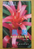 我的养花经验采撷、凤梨