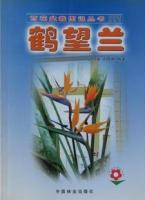 百花盆栽图说丛书、鹤望兰