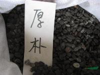 厚朴,厚朴种子,别名:厚皮、重皮、赤朴、烈朴、川朴、紫油厚朴