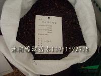 小葉女貞種子,銀杏種子,櫻花種子