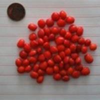 九江花榈木种子