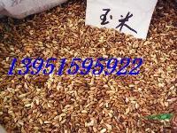 优质高产适口的好牧草墨西哥玉米狼尾草苏丹草高丹草种子价格便宜