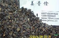 高产苏丹草高丹草优质苦麦菜苦苣黑麦草苜蓿草种子价格优惠还能邮