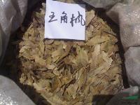 五角枫种子 喜树种子 香椿种子 江西九江种苗