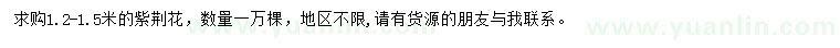 求购1.2-1.5米紫荆花