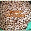 银杏种子 白果树种子 九江种子种苗