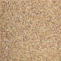 供应 维多利亚进口紫花苜蓿草种子 高休眠级 南方型苜蓿 苜蓿