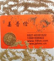 狗牙根三叶草百慕达紫羊茅黑麦草果岭草高羊茅等护坡草种植方法