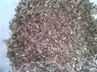 香椿种子价格分析