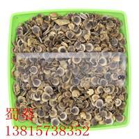 厂家直销 新采优质蜀葵种子 发芽率高 易成活 质量保障