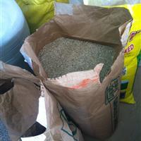 一年生黑麦草种子价格,多年生黑麦草种子批发,进口种子供应商,