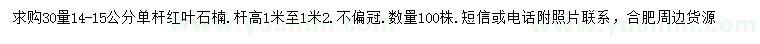 安徽省肥西县白衣山花木场