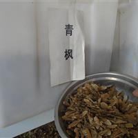 青楓種子批發,三角楓種子批發,五角楓種子批發