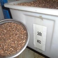 油松种子批发 , 红松 种子批发, 湿地松种子批发