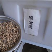 旱金莲种子价格,波斯菊种子价格,常夏石竹种子价格