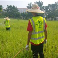 小区绿化养护,庭院绿化养护,学校,工厂绿化养护