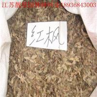 日本紅楓種子價格 日本紅楓種子種子方法及簡介 紅楓樹供應