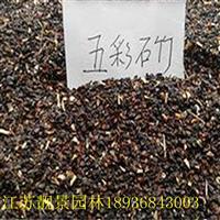 石竹草种子报价 石竹草种子种植方法及简介 五彩石竹草种子批发